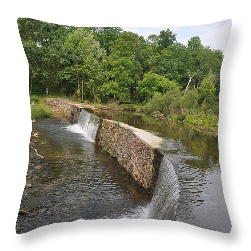 Little Valley Creek Throw Pillow featuring the photograph Little Valley Creek by Bill Cannon