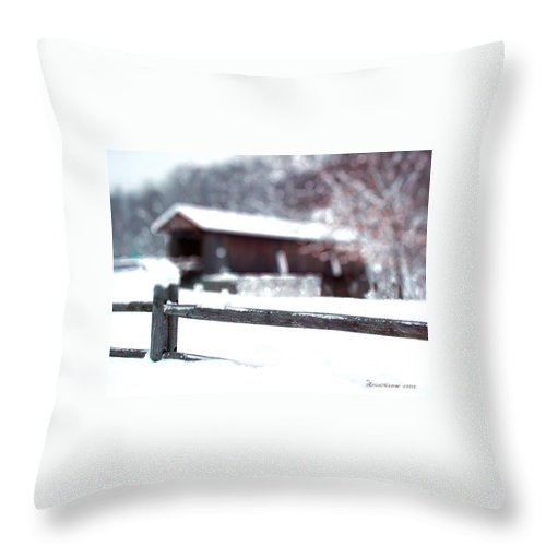 Bridge Throw Pillow featuring the photograph Livingston Manor Covered Bridge by Ericamaxine Price