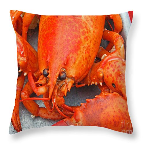 Lobster Throw Pillow featuring the photograph Lobster by Lizi Beard-Ward