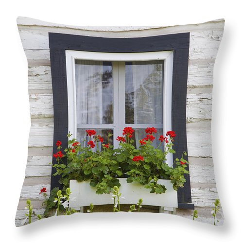 Box Throw Pillow featuring the photograph Log Home And Flower Box In The Window by David Chapman