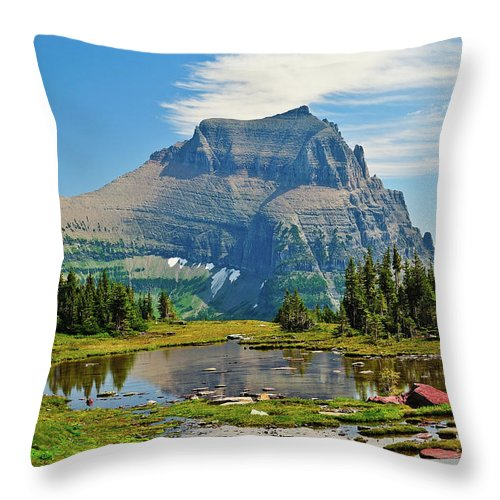 Glacier National Park Throw Pillow featuring the photograph Logan Pass by Greg Norrell