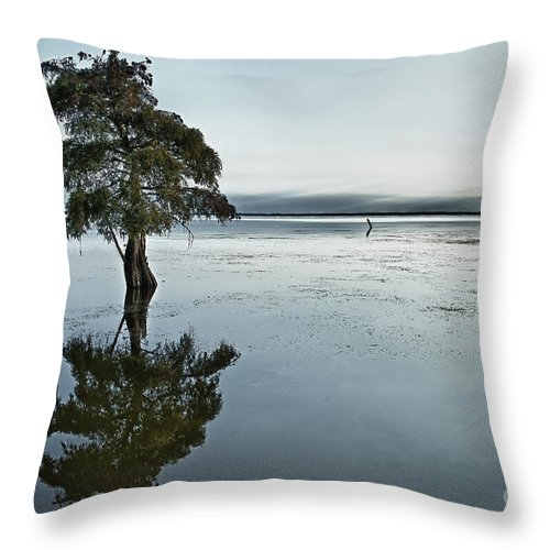 Individual Throw Pillow featuring the photograph Lone Cypress Tree In Water. by John Greim