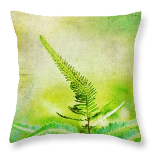 Beautiful Throw Pillow featuring the photograph Lone Leaf by Darren Fisher
