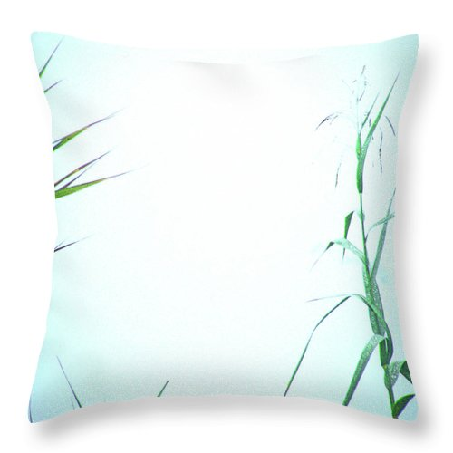 Fog Throw Pillow featuring the photograph Look Of Fog by Lizi Beard-Ward
