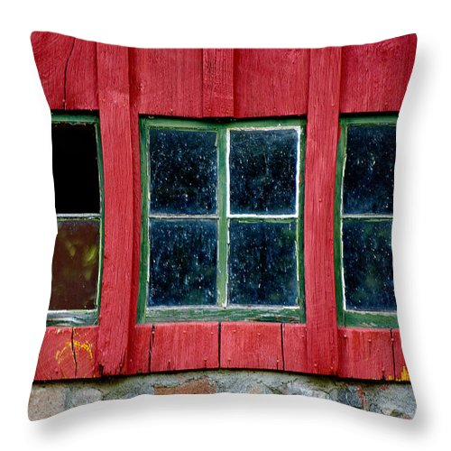 Window Throw Pillow featuring the photograph Look Throught Any Window by Vicki Pelham