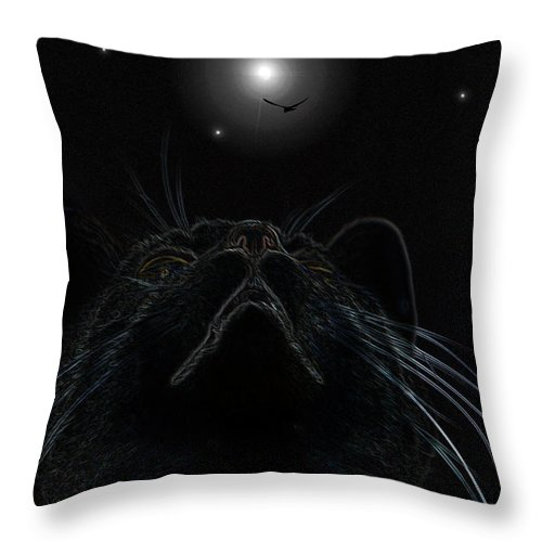 Cat Throw Pillow featuring the photograph Look Up In The Sky - I Hope Its A Bird by Ericamaxine Price