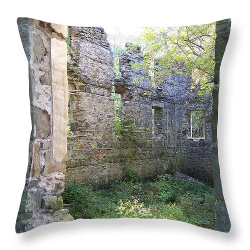 Building Throw Pillow featuring the photograph Looking Inside by Corinne Elizabeth Cowherd