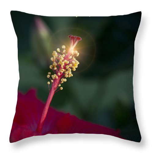 Lord Throw Pillow featuring the photograph Lord Jesus My Love by Kathy Clark