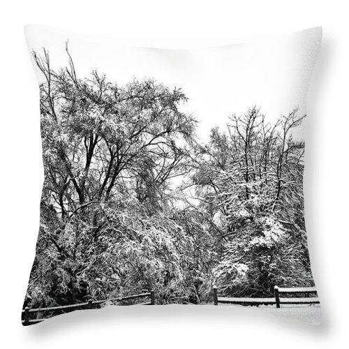 Snow Throw Pillow featuring the photograph Lovely Day by Edward Peterson