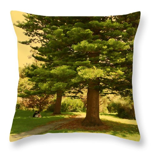 Lovers Throw Pillow featuring the photograph Lovers In Spring by Douglas Barnard