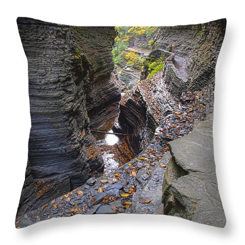 Watkins Glen Throw Pillow featuring the photograph Low Water by Joshua House