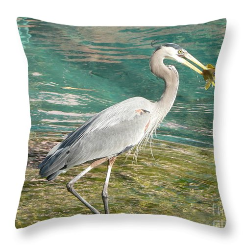 Great Throw Pillow featuring the photograph Lunchtime by Laurel Best