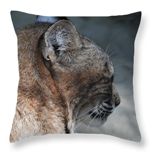 Lynx Throw Pillow featuring the photograph Lynx by Maggy Marsh