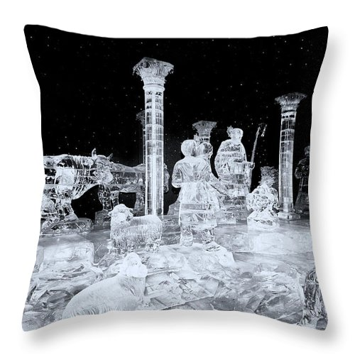 Made Of Ice-ice Throw Pillow featuring the photograph Made Of Ice V5 by Douglas Barnard