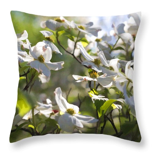 Cornus Florida Throw Pillow featuring the photograph Magical White Flowering Dogwood Blossoms by Kathy Clark