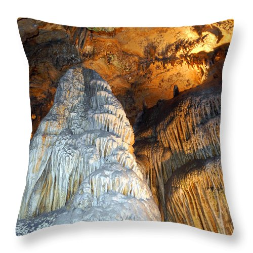Old Throw Pillow featuring the photograph Magnificence by Lynda Lehmann