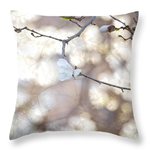 April Throw Pillow featuring the photograph Magnolia Dream by Susan Cole Kelly
