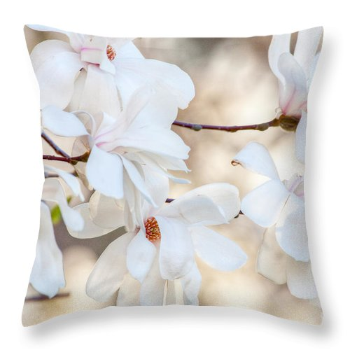 April Throw Pillow featuring the photograph Magnolia Spring by Susan Cole Kelly