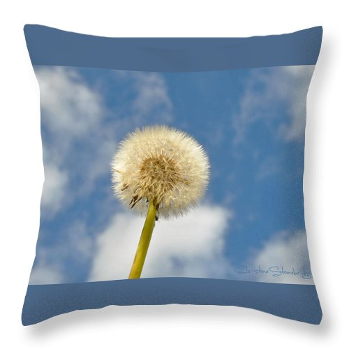 Wish Throw Pillow featuring the photograph Make Another Wish by Christine Stonebridge