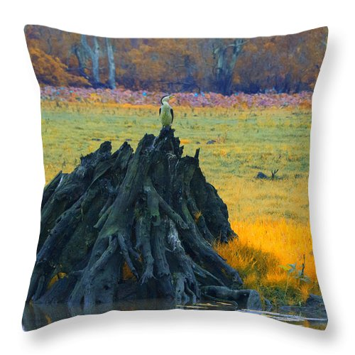 Dead Mangrove Tree Throw Pillow featuring the photograph Mangrove Lookout by Douglas Barnard