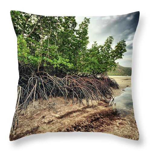 Island Throw Pillow featuring the photograph Mangroves by MotHaiBaPhoto Prints