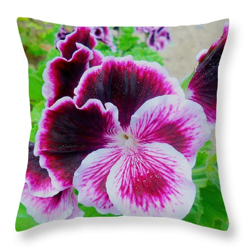 Nature Throw Pillow featuring the photograph Marblewine by Monica Vega