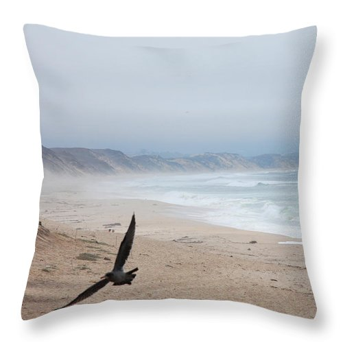 Marina Dunes Beach Throw Pillow featuring the photograph Marina Beach Fly By In The Mist by Kathleen Grace