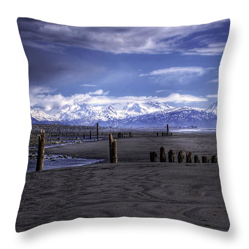 Beach Throw Pillow featuring the photograph Mariner Park by Michele Cornelius