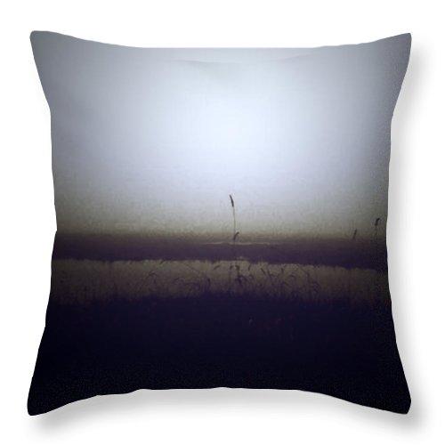Sea Throw Pillow featuring the photograph Marshland Grass by Nina Fosdick