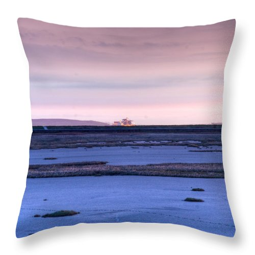 Bay Throw Pillow featuring the photograph Martian Outpost Abandoned Zone by Douglas Barnett