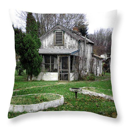 Throw Pillow featuring the photograph Maryland 5 by Burney Lieberman
