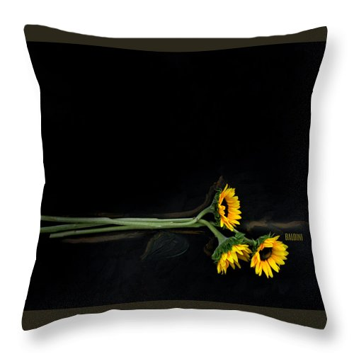 Sun Flower Throw Pillow featuring the photograph Master Sunflowers by J R Baldini M Photog