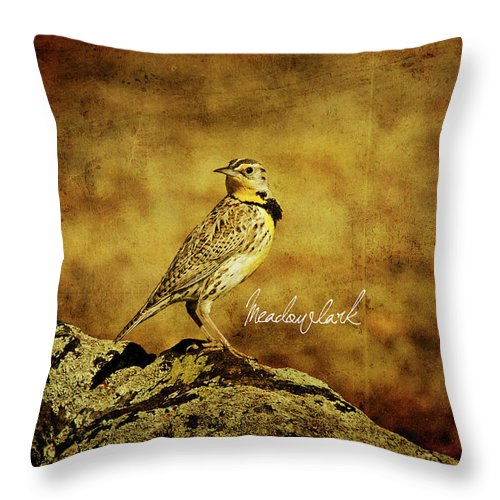 Eastern Throw Pillow featuring the photograph Meadowlark by Lana Trussell