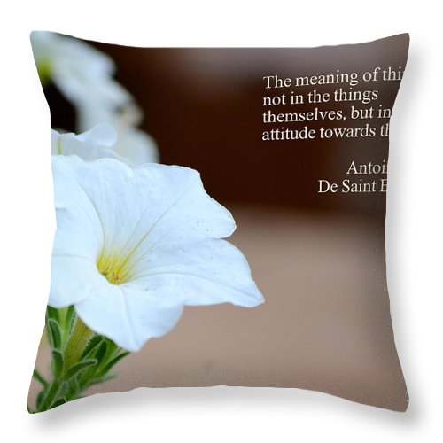 Meaning Throw Pillow featuring the photograph Meaning Of Things by Maria Urso