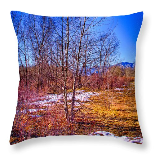 Denver Throw Pillow featuring the photograph Melting Snow In South Platte Park by David Patterson