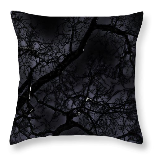 Tree Throw Pillow featuring the photograph Midnight Tree 1 by David Sanchez