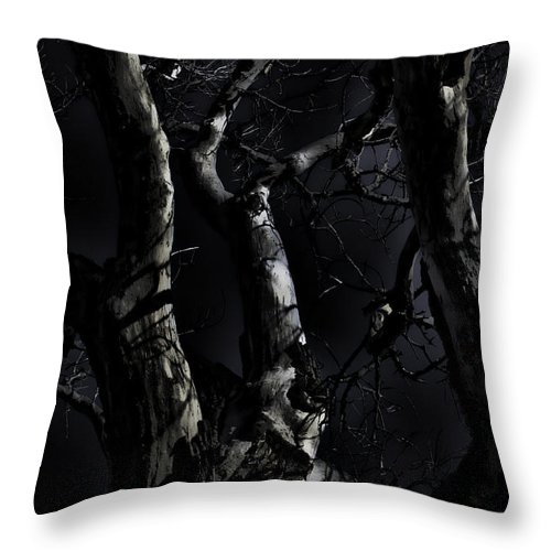 Tree Throw Pillow featuring the photograph Midnight Tree 3 by David Sanchez