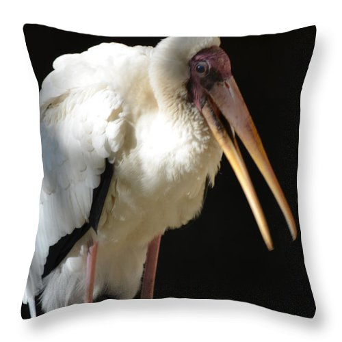 Milk Throw Pillow featuring the photograph Milky Stork by Maggy Marsh