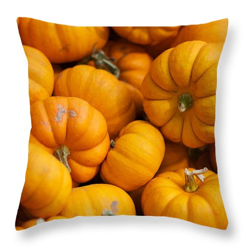 Fall Squash Throw Pillow featuring the photograph Mini Pumpkins by Brooke Roby