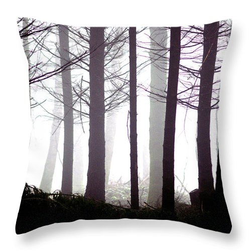 Misty Throw Pillow featuring the photograph Misty Forest by Erik Tanghe