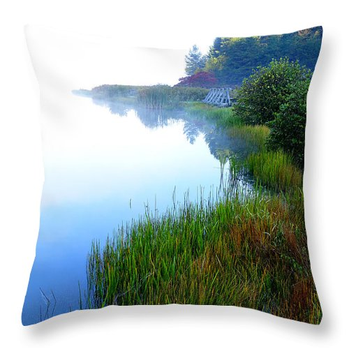 West Virginia Throw Pillow featuring the photograph Misty Morning Big Ditch Lake by Thomas R Fletcher