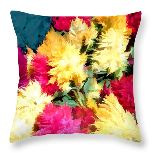 Flower Flowers Garden Celosias Flora Floral Nature Cockscomb Cockscombs Feathery Red Pink Yellow Gold Plumes Plume Celosia Natural Bloom Blooms Blossoms Blossom Bouquet Arrangement Colorful Plant Plants Botanical Botanic Blooming Gardens Gardening Tropical Throw Pillow featuring the painting Mixed Celosias In Fall Colors by Elaine Plesser