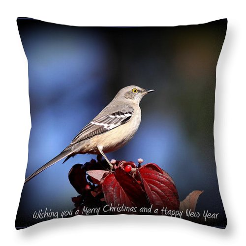 Mockingbird Throw Pillow featuring the photograph Mockingbird Holidays by Travis Truelove