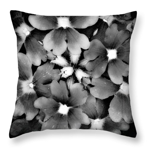 Monotone Throw Pillow featuring the photograph Monotone Bouquet by David Patterson