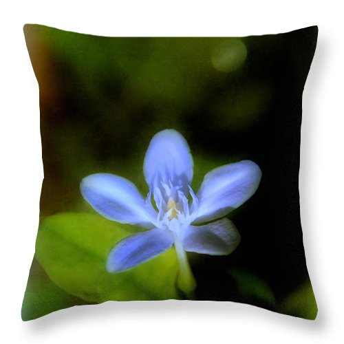 Moon Throw Pillow featuring the photograph Moon Flower by Judi Bagwell