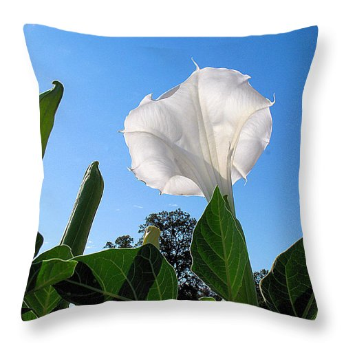 Moonflower Throw Pillow featuring the photograph Moonflower Rising by Joyce Dickens