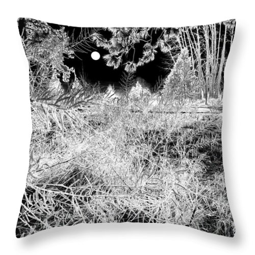 Frost Throw Pillow featuring the digital art Moonlit Frost by Will Borden