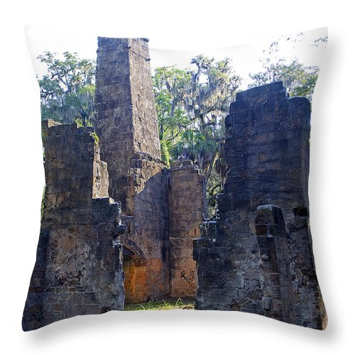 Scenery Throw Pillow featuring the photograph Morning At Bulow Plantation by Kenneth Albin