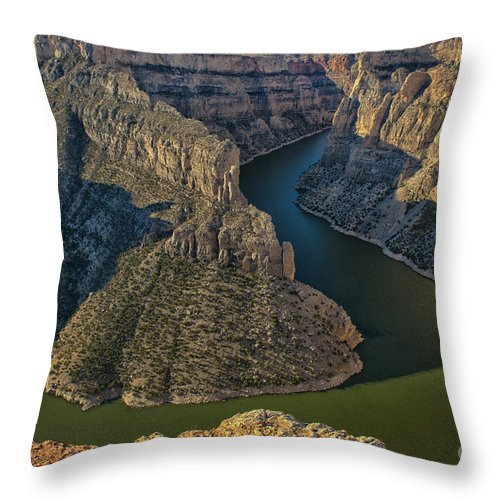 Landscape Throw Pillow featuring the photograph Morning In Bighorn Canyon by Sandra Bronstein