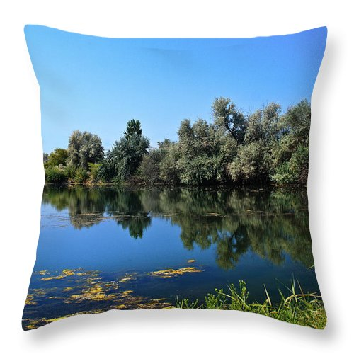 Lake Throw Pillow featuring the photograph Morning Reflection by Robert Bales